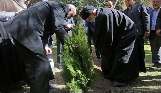 بالصور..قائد الثورة يحث على حماية المساحات الخضراء