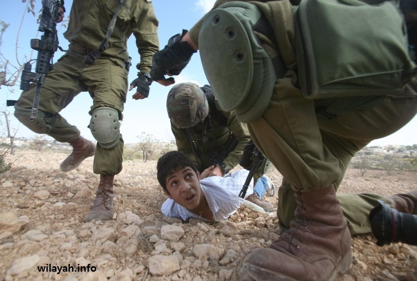 AFP PICTURE OF THE YEAR 2010