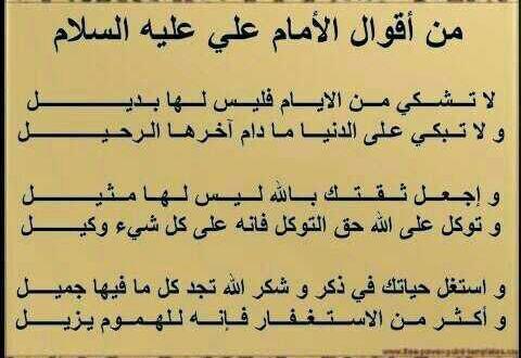 سؤال وجواب عن النبي محمد