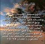 IMG_2901 - Copy