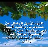 IMG_4079 - Copy