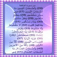 IMG_4554 - Copy